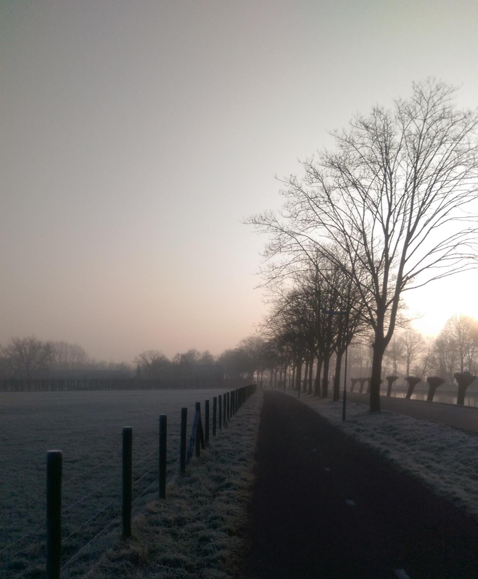 inspirerende ochtendloop